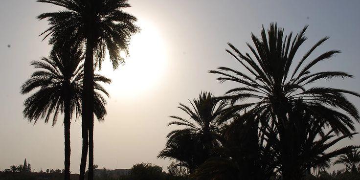 Que Faire à Marrakech, excursions activités Marrakech, dîners marrakech, Insolite Marrakech, visites à Marrakech. Excursions 4x4 Marrakech, événements Marrakech