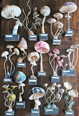 Mister Finch - textile art- mushroom collection
