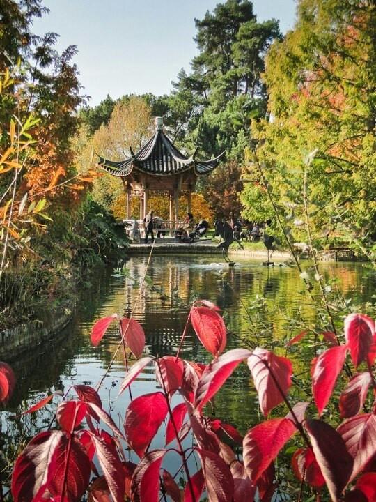 RHS garden Wisley in Autumn