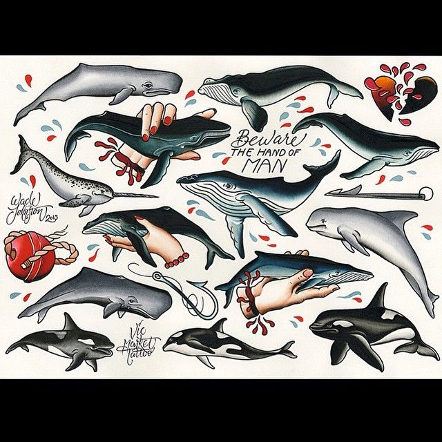 Wade Johnston has just finished up this whale tattoo flash sheet. If any of…