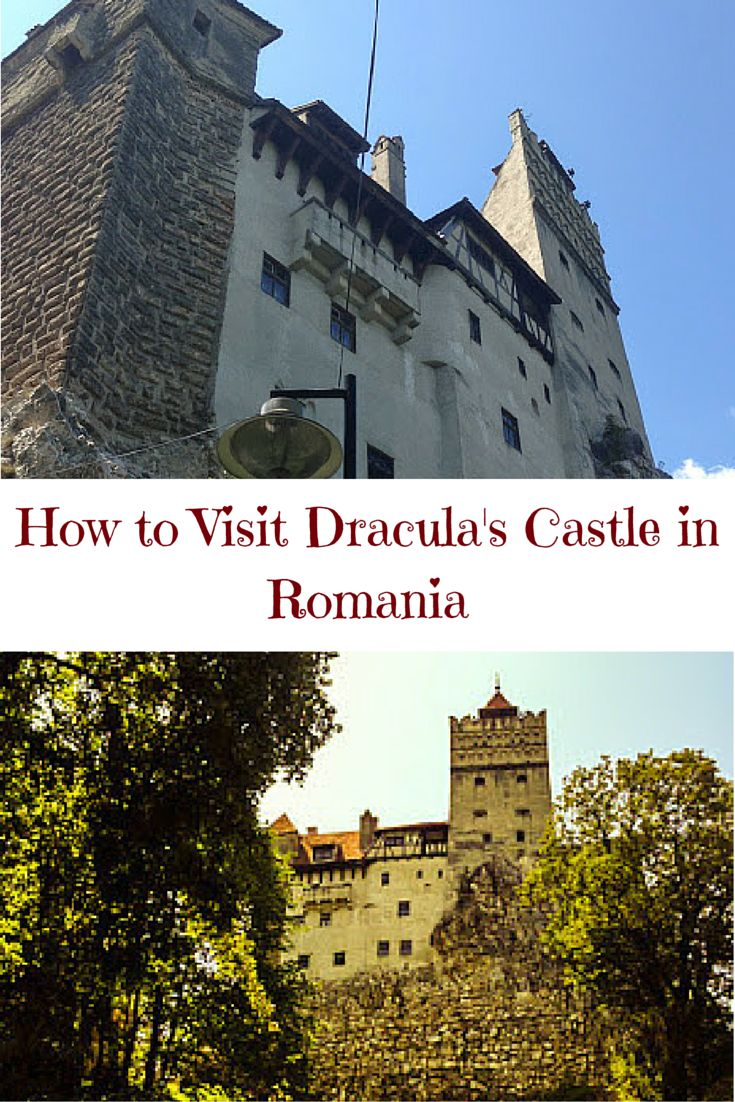 Find out how to get to Dracula's Castle from Brasov, Romania and what to do when you are there! You might even spot a vampire!