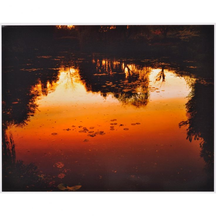 Nocturnes à Giverny - Elger Esser - Weng Contemporary  https://www.wengcontemporary.com/shop/product/nocturnes-a-giverny #elgeresser #nocturnes #giverny #landscape #wengcontemporary #buyonline #print #cprint