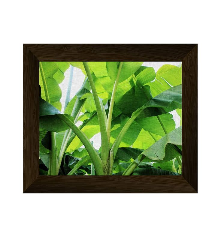 banana leaves wall art, palm leaves print, nature photography, tropical poster, nature wall art prints, instant digital download di AlemiPrints su Etsy