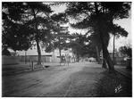 Downey Street, Alexandra, Vic. 1910-1915