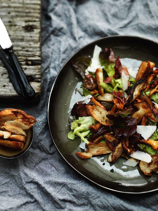 salade met gebakken paddenstoelen, croutons en geitenkaas | ZTRDG magazine