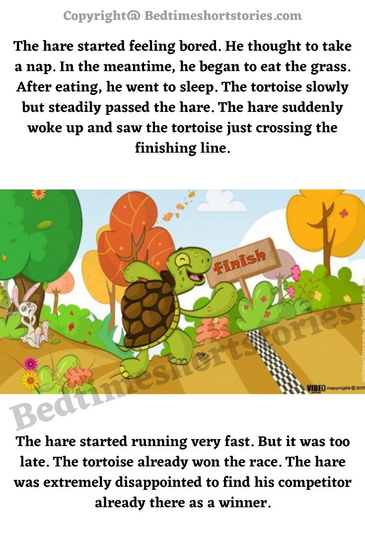 Hare And Tortoise Story Hare Tortoise Stories For Kids Short Stories For Kids [ 1102 x 735 Pixel ]