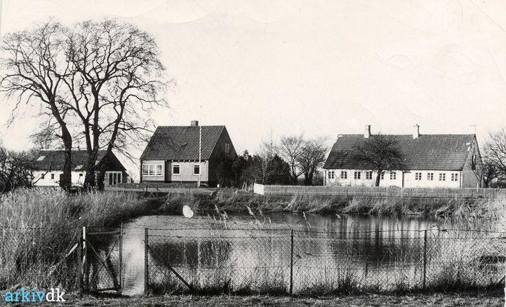 arkiv.dk   Askø - gadekæret og skolen