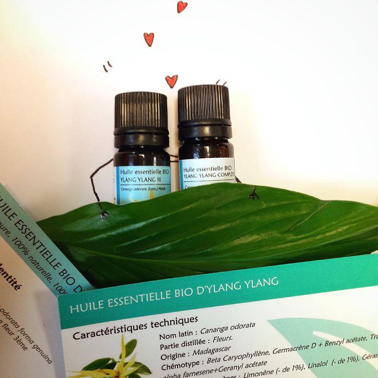 Une petite baisse de libido ? L'huile essentielle d'Ylang-Ylang apporte un coup de pouce à votre vie amoureuse ;) #huilesessentielles #aromatherapie #ylangylang #lover #letsgetiton
