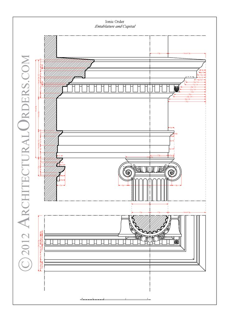 Ionic Order: entablature and capital