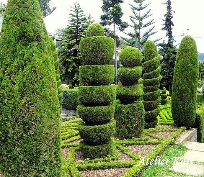 Botanisk hage på Madeira. Atelier Kari naturdekorasjoner og kranser
