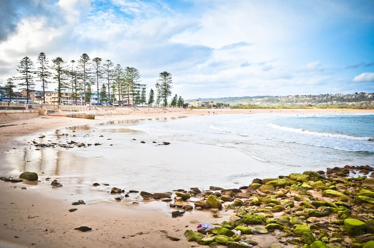 Dee Why Beach in Dee Why, NSW
