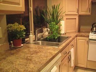 Best Realtor Lender Moving Company Countertop Installer Granite Countertops And Kitchens