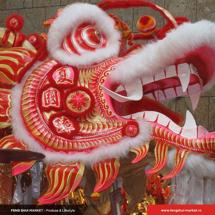 Anului Calului • Ziua 5  Cea de-a cincea zi a Anului Nou este ziua zodiei Cal. În aceasă zi este specific Dansul Leului, iar proprietarii de afaceri rostogolesc portocale în magazine pentru a le aduce belșug. Locuințele cu intrarea principală spre N-V sau S-E vor beneficia de asemenea de prosperitatea adusă de Dansul Leului.