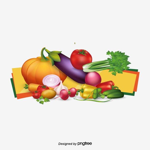 Vegetable Vector Fruit Vector Fruit Clipart Eps Tomato Radish Pumpkin Green Pepper Vector Vegetables Potato Pea Vegetab Fruit Vector Fruit Clipart Fruit Sketch