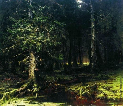 Клевер Ю. Ю. Девственный лес