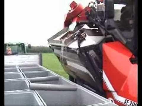 Wijndomein Aldeneyck - oogst 2010