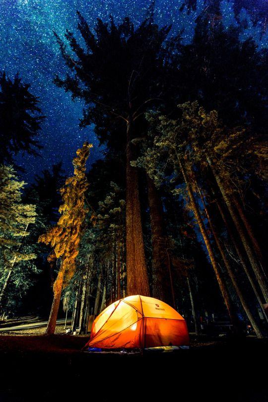 Sunset Campground, Hume CA by Denys Nevozhai