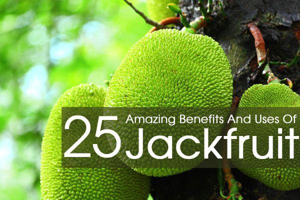 Jackfruit is a sweet tasting fruit belonging to mulberry family. Rich source of nutrients, it offers various benefits for health, skin & hair. Know them.
