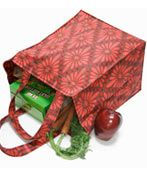 Earth friendly reusable Grocery Bag