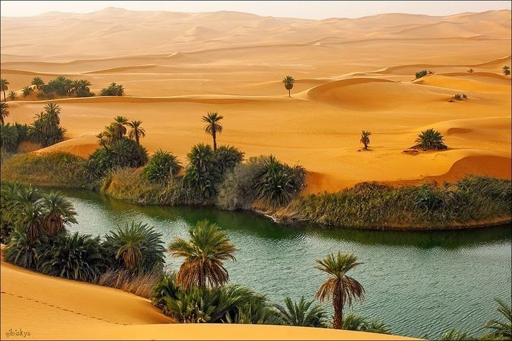 The Ubari Sand Sea is a vast area of towering sand dunes in the Fezzan region of south-western Libya. But 200,000 years ago, this was a wet and fertile region with plenty of rainfall and flowing rivers.