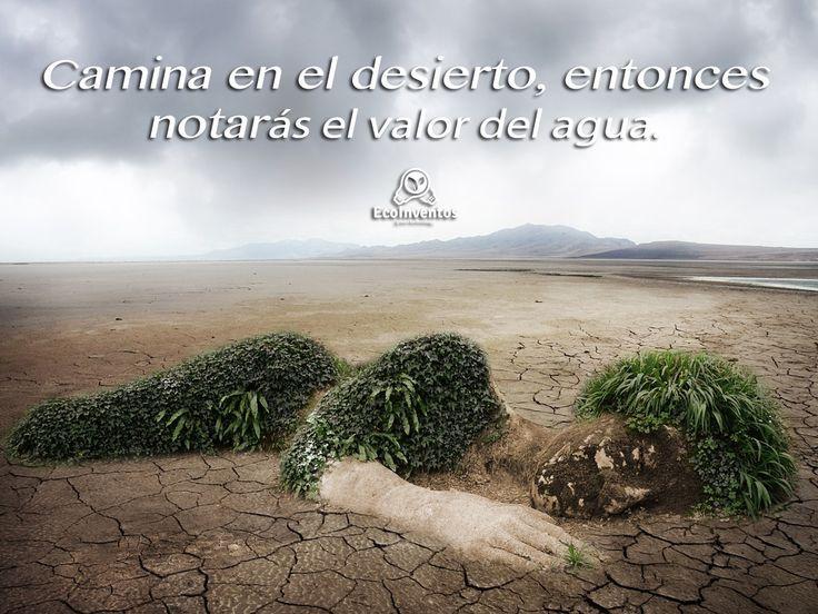 Camina en el desierto, entonces notarás el valor del agua.