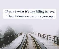 Shawn Mendes lyrics (Kid in Love)