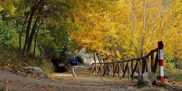 Caminos para disfrutar de la naturaleza en Alcoy