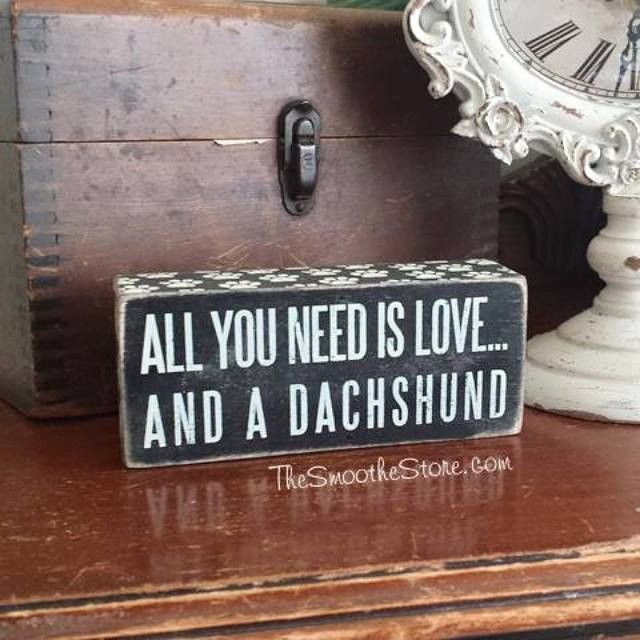 """All You Need is Love and a Dachshund"" Box Sign - The Smoothe Store"