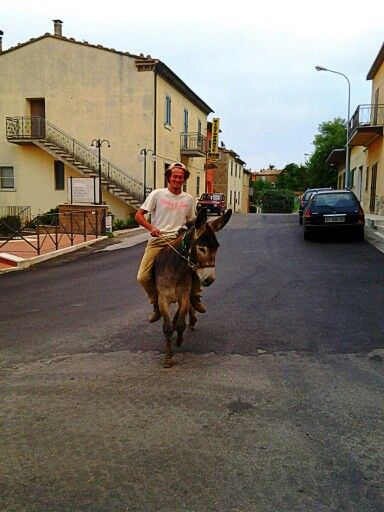 Gianluca on his donkey in #poggiomurella