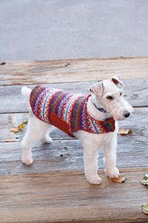 Fair isle dog sweater! knitting pattern