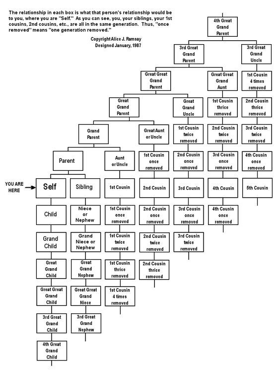 "Family Relationship Chart. Great for those, ""Your 3rd cousin, twice removed"" stories!"