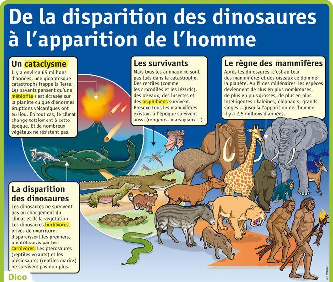 Fiche exposés : De la disparition des dinosaures à l'apparition de l'homme