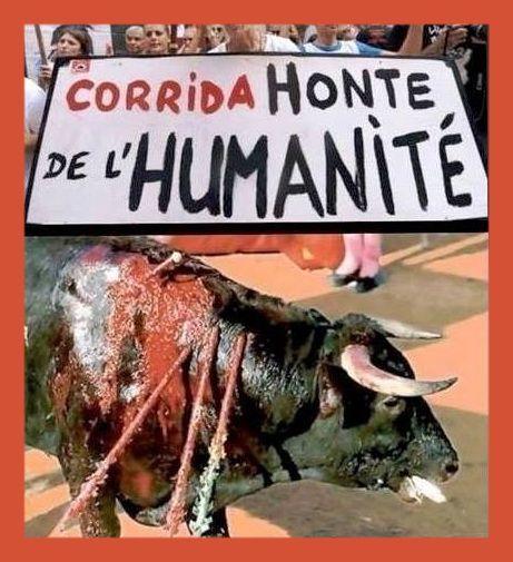j'ai honte et suis écoeurée par tant d'inhumanité !!!