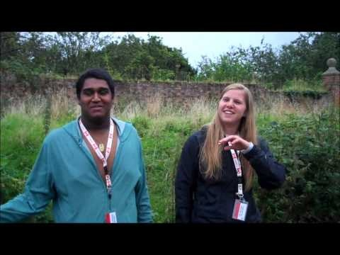 Youth Advisory Council in England, Day 3 & 4