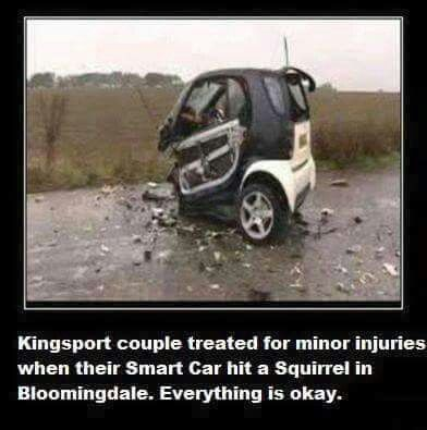Lmao When Their Smart Car Hit A Squirrel Funny