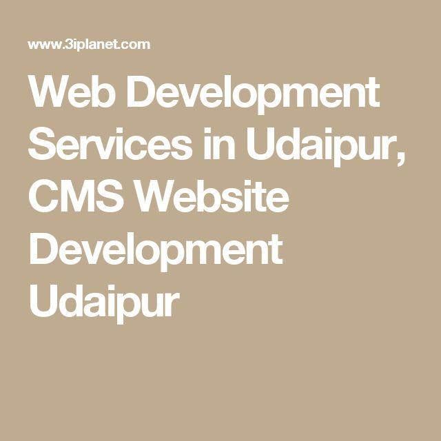 Web Development Services in Udaipur, CMS Website Development Udaipur