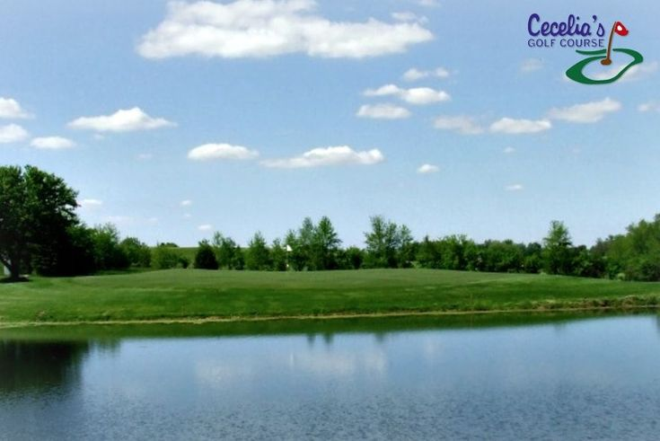 $9 for 9 Holes with Cart and Range Balls at Cecelia's Golf Course in Janesville ($27 Value. Good Any Day, Any Time until November 15, 2017!) #SuccedingAtGolf