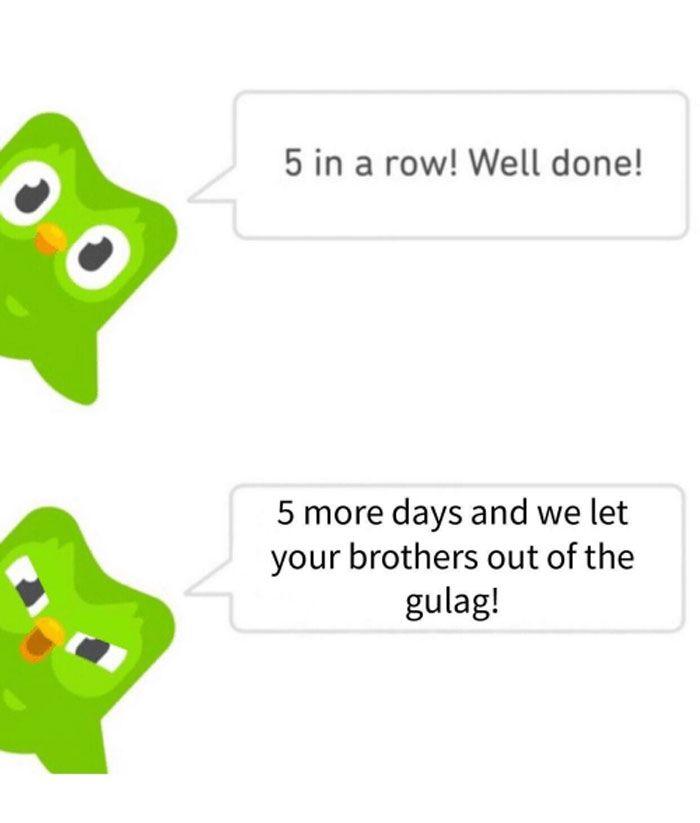 30 Hilarious Duolingo Memes With Images Comebacks Memes Jokes