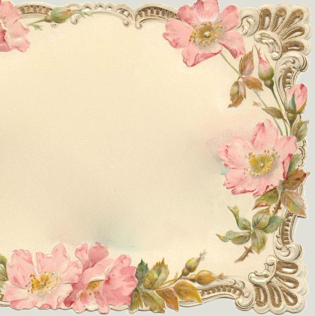 Victorian Card * Frame of SCROLLS & Wild ROSES   Our ...