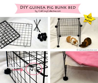 1000 ideas about guinea pig cages on pinterest guinea