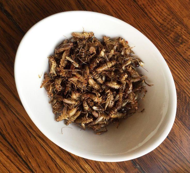 Az ENSZ egy 2013-as jelentése óta arra bíztat minket, hogy együnk rovarokat.  Én pont abban az évben jutottam el Ázsiába, ahol a tücsköket, pókokat és egyéb izgő-mozgó élőlényeket olajban sütve az út szélén is árulják az árusok. Akkortájt én még inkább arra használtam az energiámat, hogy a bogarakat a lakásból kifelé, mintsem a konyhába befelé irányítsam. Nem gondoltam volna, hogy pár év múlva tücsköt sütök --- otthon.