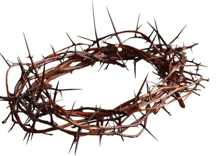 🎶A crown of thorns, to mock your name Forgiveness fell upon your face A love like this the world had never known🎶 <Jesus, Son of God>  In Feb, for communion weekend, Sis Lexin asked me t…