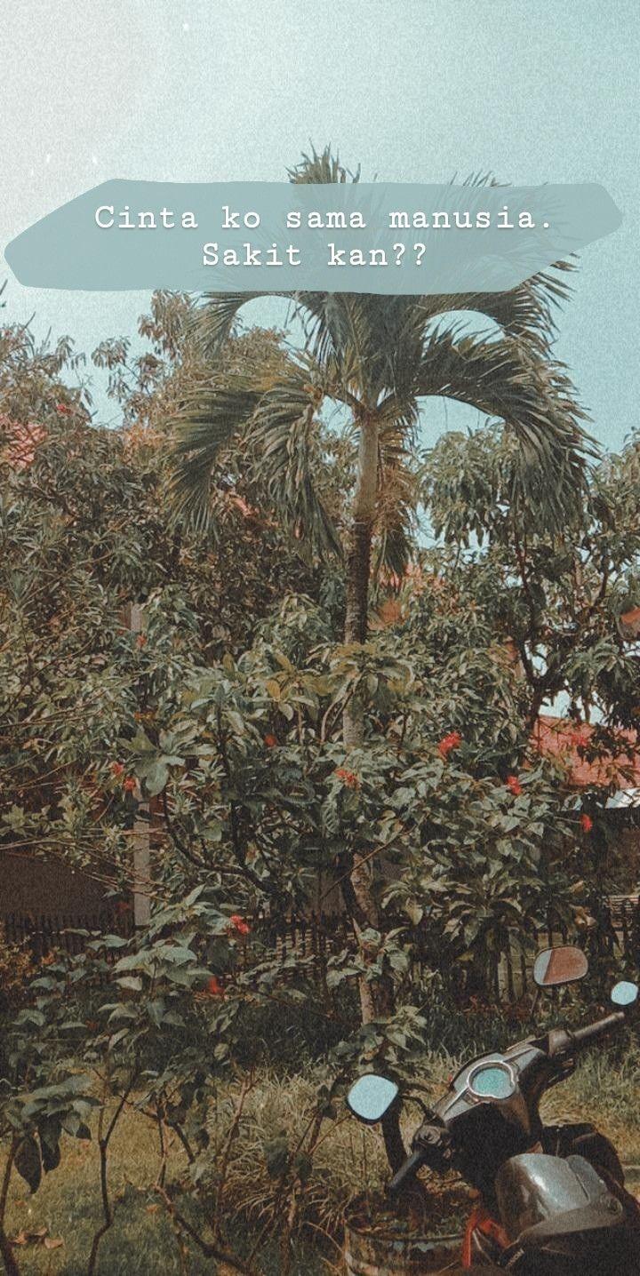Perkebunan Kelapa Sawit First Resources