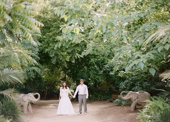 Crystal and Steve's Melbourne Zoo Wedding
