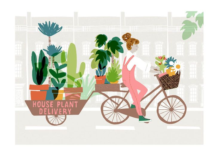 East End Prints - House Plant Delivery, £19.95 (http://www.eastendprints.co.uk/house-plant-delivery/)