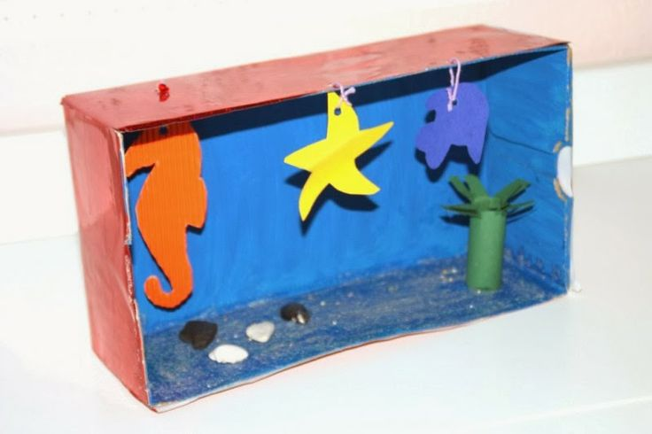 Aquarium Aus Einem Schuhkarton Make Your Own Aquarium