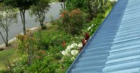 Stop cleaning gutters with Gutter Knight Gutter Guard. Brisbane Gutter Guard supplies and installs the leading affordable Gutter Guard system in Brisbane .