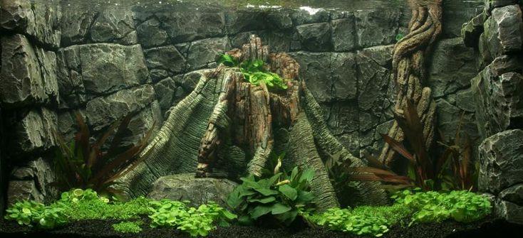 Aquarium Habitats-Aquarium Backgrounds