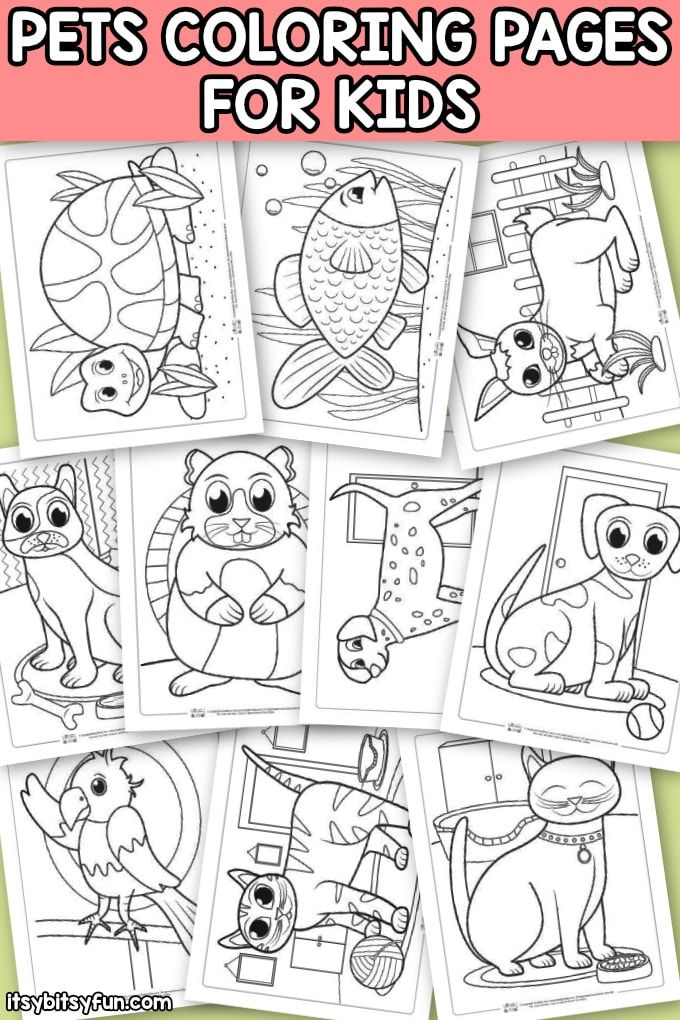 Pets Coloring Pages For Kids Itsybitsyfun Com Pets Preschool Pets Preschool Theme Free Kids Coloring Pages