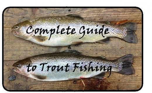 A practical guide to get started trout fishing. Tips and advice on how to catch trout, including rods and reels, trout bait, trout rigs, trout lures and when and where to go trout fishing.